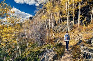 A woman tourist walking on forest trail in Colorado.